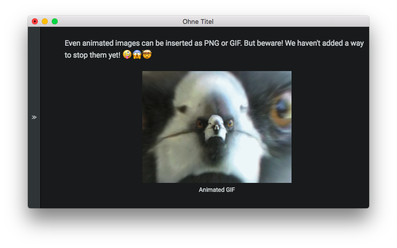 Animated GIF in Document